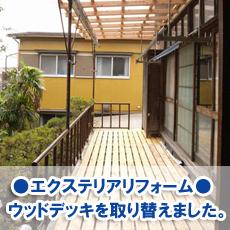mizutori20070.jpg