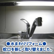 suzuki20130.jpg