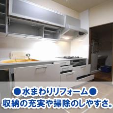 yangakimoto20120.jpg