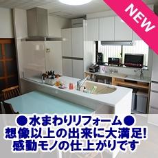 isigaki-bana1.JPG